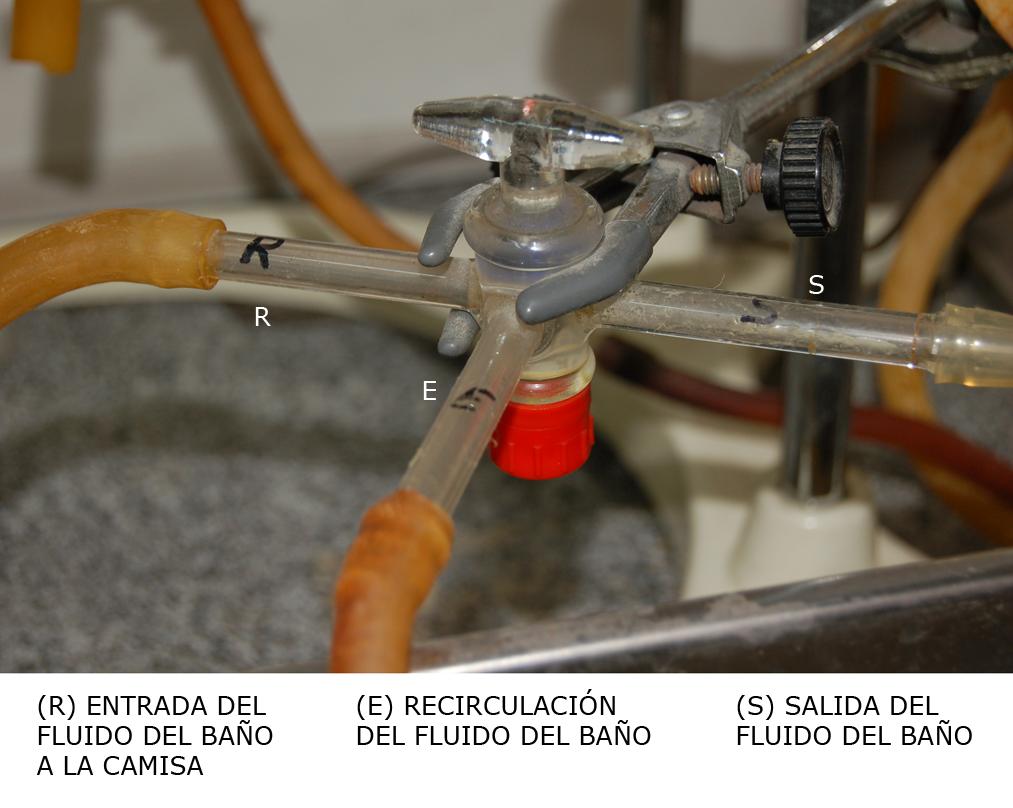 Detalle válvula de tres vías a la salida del baño termostatizado