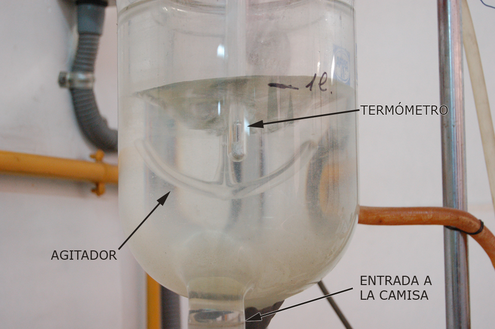 Detalle reactor discontinuo tanque agitado