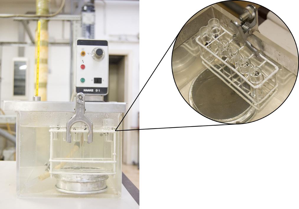 Reacción de isomerización de ácido maleico a ácido fumárico a 70 ºC